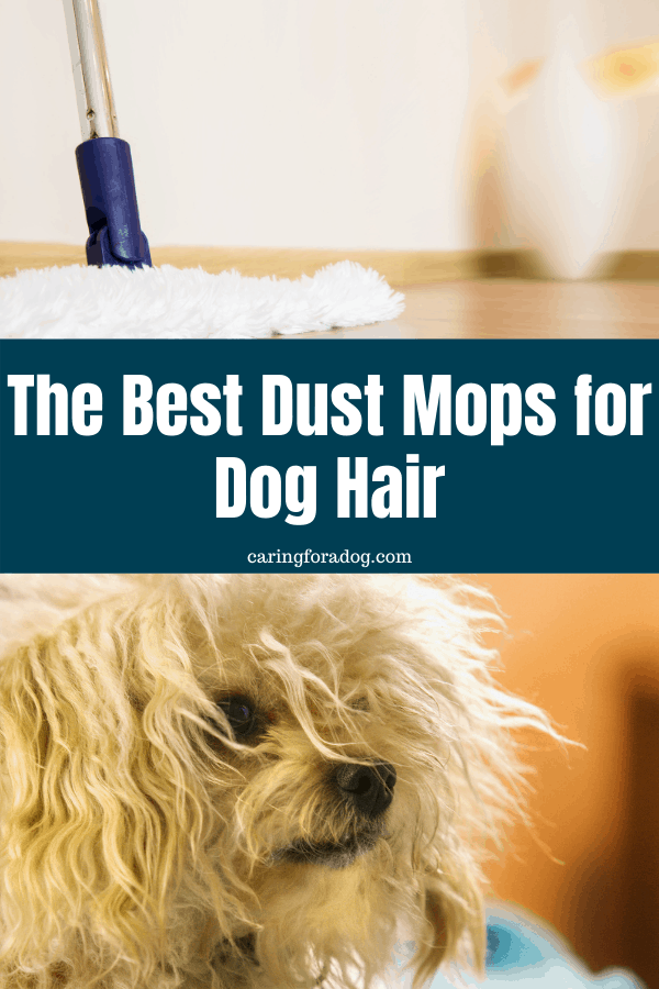 the best dust mops for dog hair
