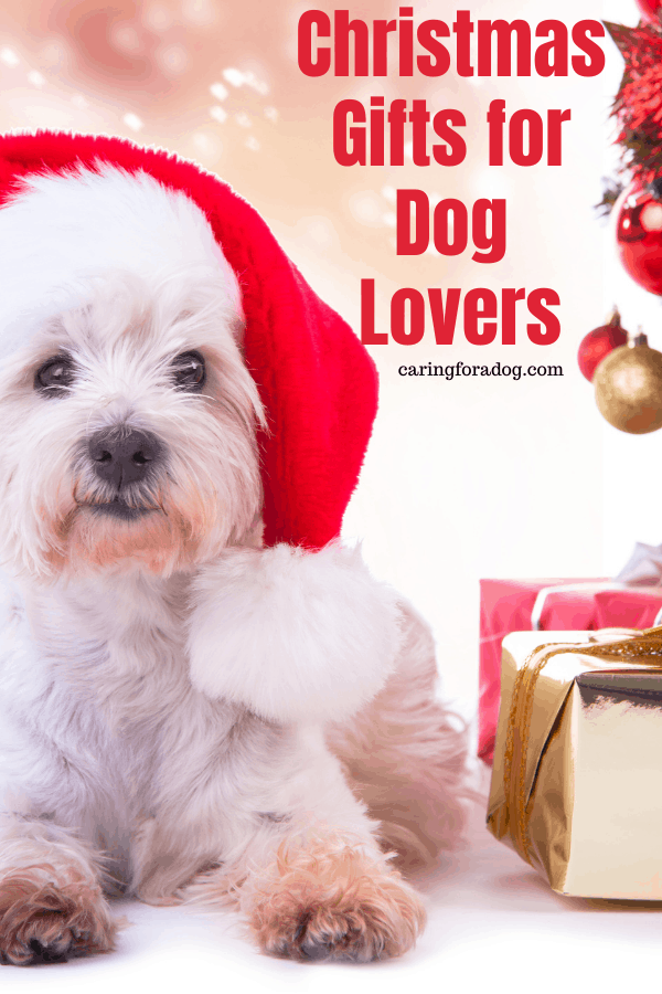 christmas gifts for dog lovers - updated for 2020