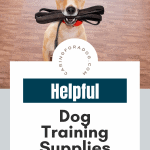 helpful dog training supplies pin
